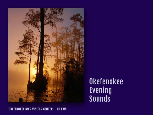 OkefenokeeAudioPlate